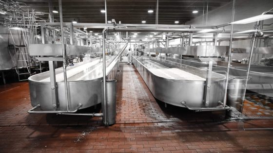 Cheese Factory: Specifications are Key in Preventing Recalls